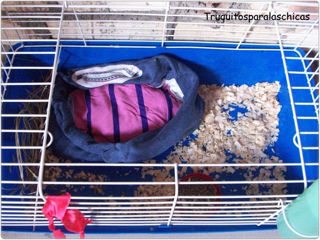 cama-conejos-enanos
