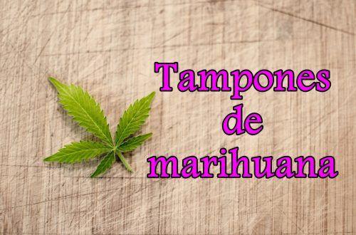 tampones de marihuana